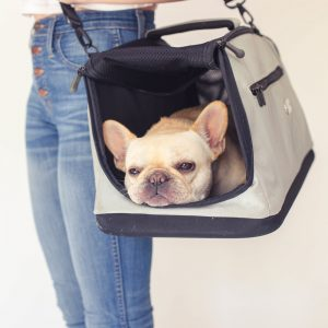 French Bulldog Carriers